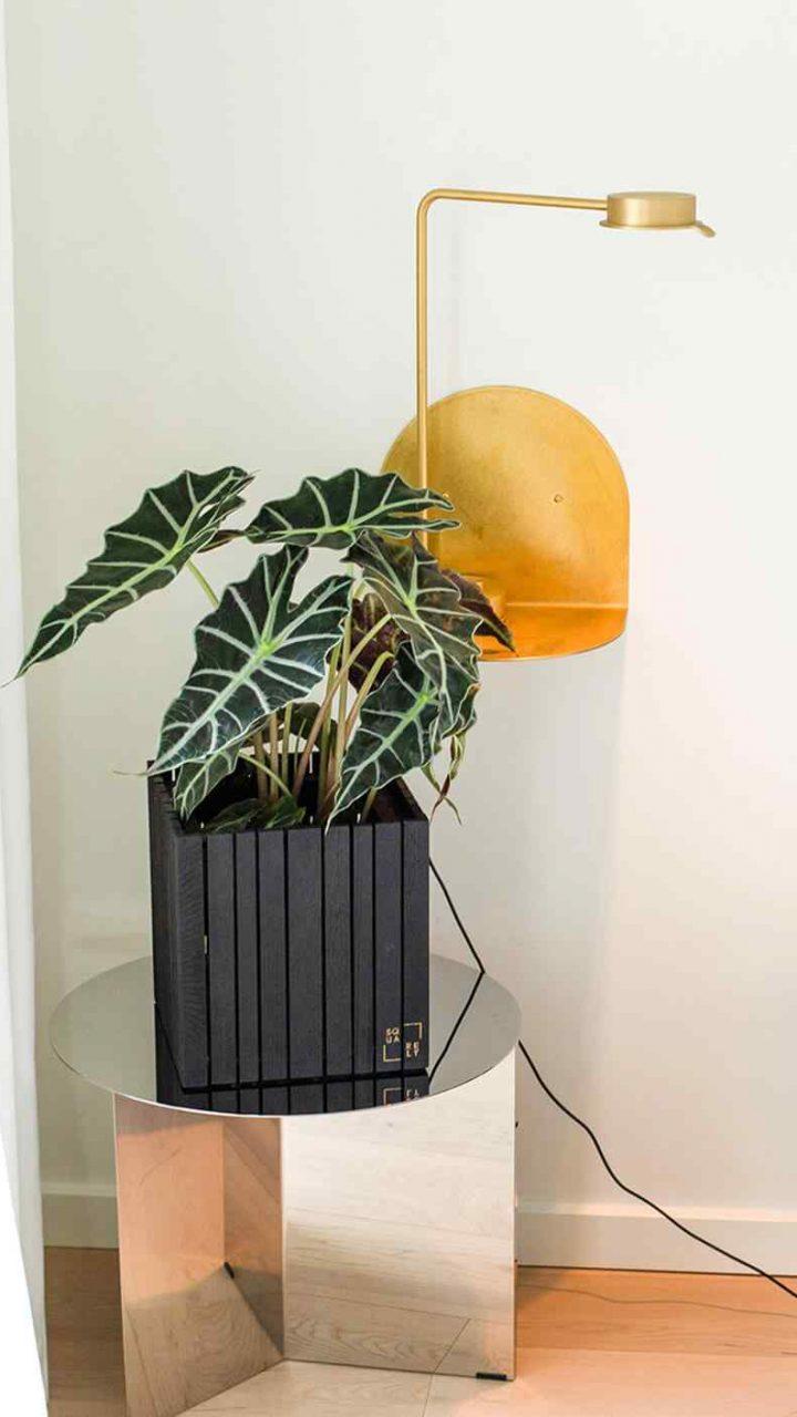 https://www.jardineriasur.cl/wp-content/uploads/2019/08/home_03_inner-720x1280.jpg