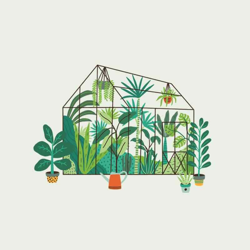 https://www.jardineriasur.cl/wp-content/uploads/2019/08/image_home_03.jpg